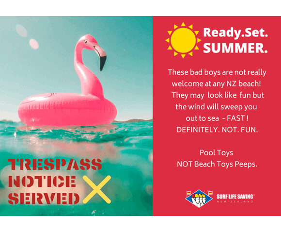Ready. Set. Summer. POOL TOYS - Flamingo